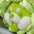 蔬菜精灵系列 白菜狗 公仔毛绒玩偶 & 抱枕